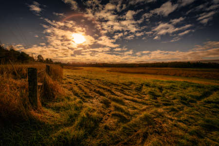 muskoka: Wide Angle landscape of a rural farm field in the countryside on a autumn morning.