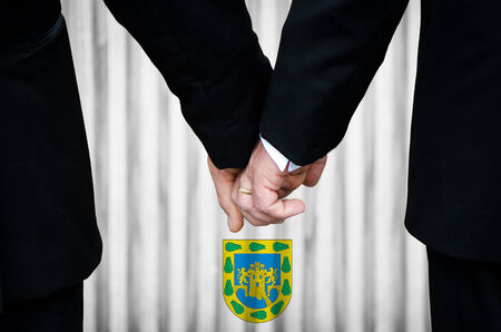 Two gay men stand hand in hand before a marriage altar featuring an overlay of the insignia used in Mexico City, having just been legally married under the Same-Sex Marriage legislation of that jurisdiction.    photo