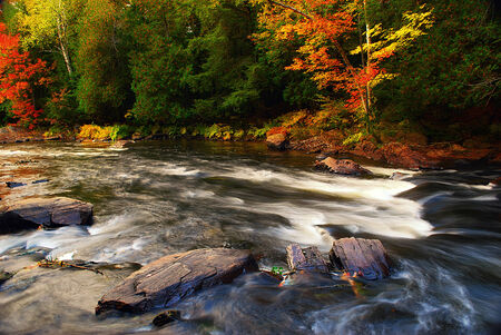 provincial forest parks: A rushing river with some green and colorful trees during the fall  Stock Photo