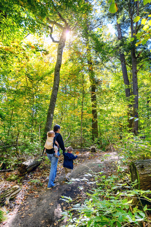 A woman with a baby in a back carrier holding the hand of a toddler as they walk on a trail in a forest during the autumn season.  The toddler holds on to a maple leaf.