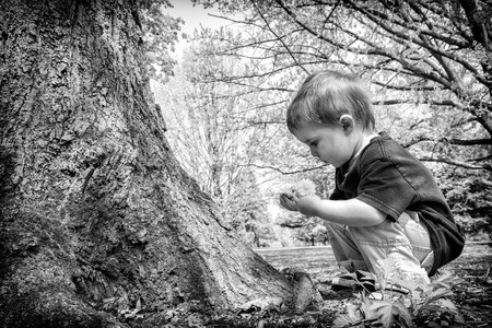 crouches: A young boy crouches near a tree looking at a twig in his hand while holding a dandelion flower in the other hand.  Processed in black and white.