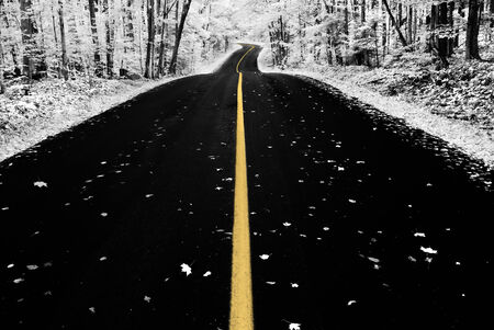 An infrared photo taken of an road through a forest during the autumn season. photo