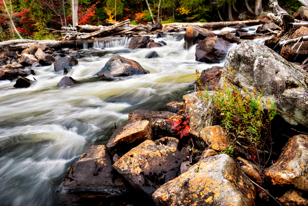 rushing water: A close up view of the rushing water in a stream in the forest during the autumn season. Stock Photo