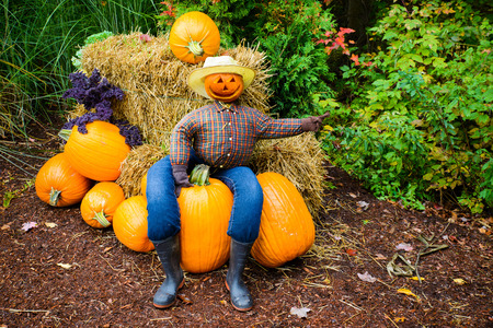 A welcoming scarecrow sitting on a pumpkin points the way to a farm. photo