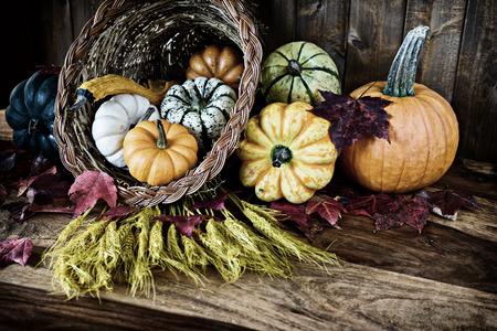 cuerno de la abundancia: Un cuerno de la abundancia de gracias generosa con calabaza, calabazas, calabazas, trigo y hojas en una vieja mesa antigua. Bleach filtro aplicado.