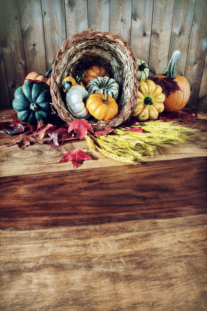 A cornucopia with squash, gourds, pumpkins, wheat and leaves on an old antique harvest  table.  Room for copy space. Stock Photo