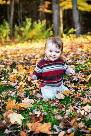 A portrait of a happy toddler sitting outside surrounded by fallen leaves holding a maple leaf. photo