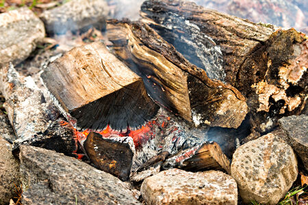 A close up of logs of wood burning in a fire pit.