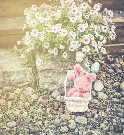 A plush pink Easter bunny sits in a basket with three eggs in a garden setting outside during the spring season.  Filtered for a retro, vintage look. photo