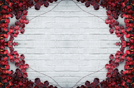 A gray brick wall surrounded by a border of grape vines and autumn red leaves.  Room for copy space.