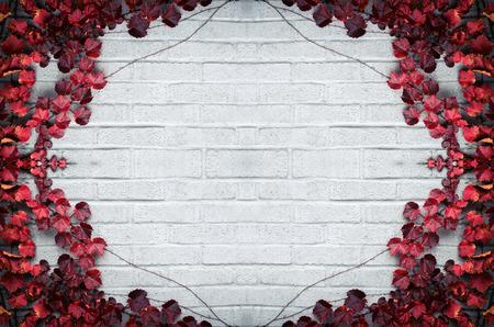 Eine graue Mauer durch eine Grenze von Weinreben und Herbst rote Blätter umgeben. Raum für Raum Kopie. Standard-Bild - 36568214