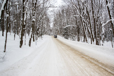driving conditions: A car is stopped down a snow covered rural road running through a snowy forest during the winter season.