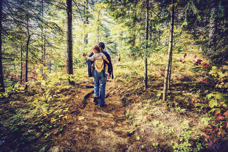 ontario: A mother is hiking on a trail in a forest with her baby in a back carrier during the autumn season.  Filtered to give retro, faded look.