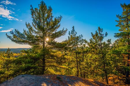 provincial forest parks: The sun shines through evergreen trees on top of a rocky cliff in a forested landscape during the autumn season.