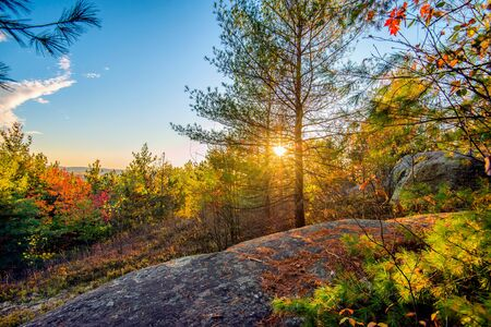 country landscape: The sun shines through trees in a rocky forest landscape during the autumn season.