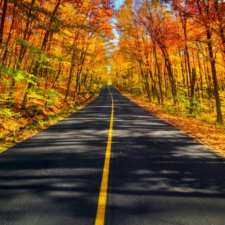 Een lange twee baans landelijke weg loopt door een kleurrijke trillende treed gang landschap tijdens de herfst seizoen.