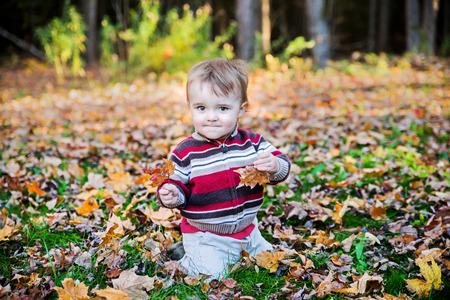 A boy sits on a leaf covered ground in a forested landscape holding out a maple leaf in each hand during the autumn season. photo