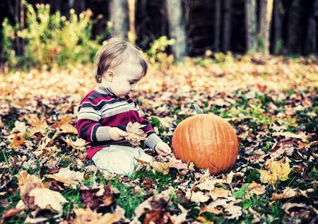sitting on the ground: A boy sits beside a pumpkin outside looking down at the leaf covered ground in a forested landscape holding a maple leaf during the autumn season.  Filtered to give vintage, faded look.