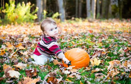 A boy sits beside a pumpkin outside on the leaf covered ground in a forested landscape holding on to the stem during the autumn season. photo