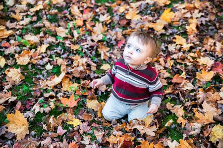sitting on the ground: A boy sits on a leaf covered ground in a forested landscape looking up at the sky during the autumn season.  Room for copyspace.