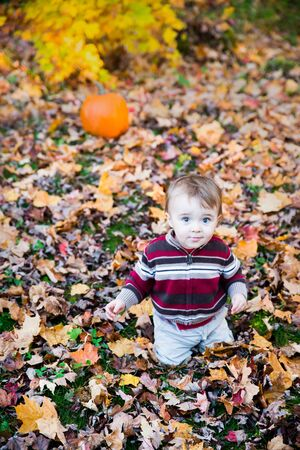 A smiling boy sits on a leaf covered ground in a forested landscape with a pumpkin sitting behind him in the background during the autumn season. photo