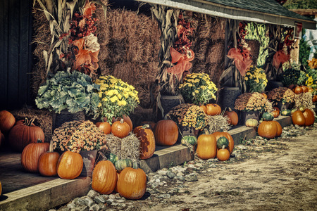 Autumn decor display at a farm composed of pumpkins, bales of hay, fall flowers and cornstalks.  Filtered for a retro, vintage look.