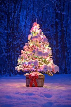 Een besneeuwde natuurlijke vuren kerstboom met verlichte kleurrijke verlichting zit in een oude oude wijnvat pot buiten in een besneeuwde bossen in de winter 's nachts.