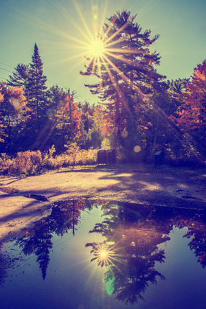 reflects: Sun light beams shine behind trees creating a solar flare in a park landscape.  A large puddle in a parking lot reflects a mirror image of the sun and landscape.  Filtered for a retro, vintage look. Stock Photo