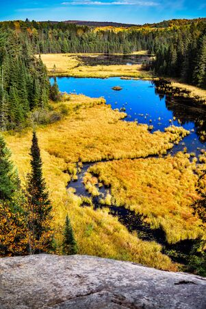 A high angle shot of a pond with a beaver lodge. Stock Photo