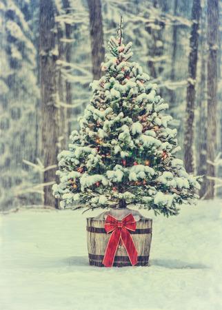 Een besneeuwde natuurlijke vuren kerstboom met verlichte kleurrijke verlichting zit in een oude oude wijnvat pot buiten in een besneeuwde bos tijdens het winterseizoen. Gefilterd voor een retro, vintage look.