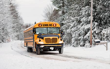 transporte escolar: Un autob�s escolar conduce por un camino rural pa�s cubierto de nieve rayado con �rboles cubiertos de nieve despu�s de una tormenta de nieve durante la temporada de invierno. Serie 3 de 3