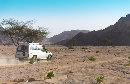 monte sinai: 4x4 off-road. Egipto. Desierto del Sinaí