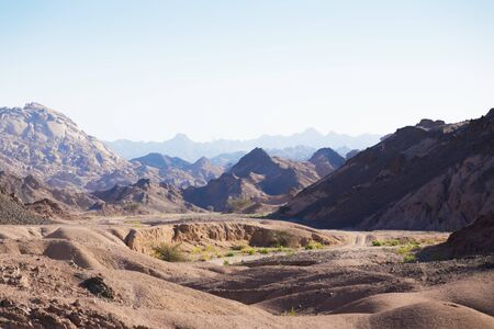sinai desert: Egypt. Mountain landscape of the Sinai Desert