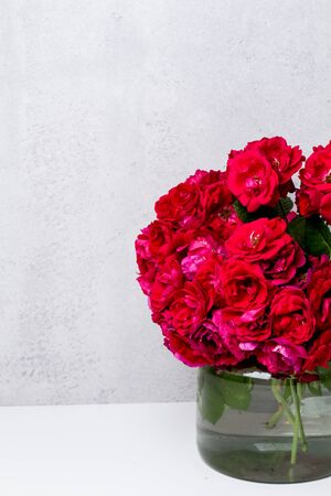garden pink roses on a background of gray concrete