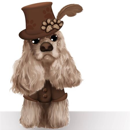 Fashion Dog Stock Photo