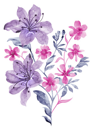 ornamental plant: watercolor illustration flowers in simple background