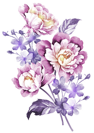 botanical drawing: watercolor illustration flowers in simple background