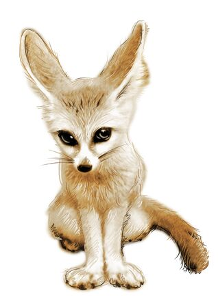 pathetic: Sketch fox in simple background Stock Photo