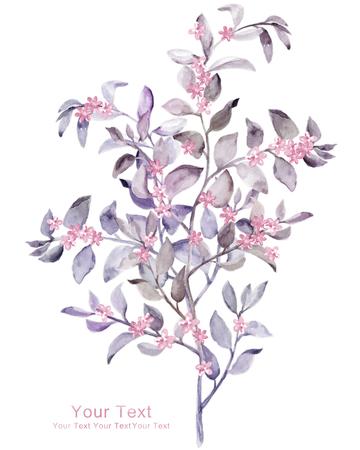 macro flowers: watercolor illustration flowers in simple background