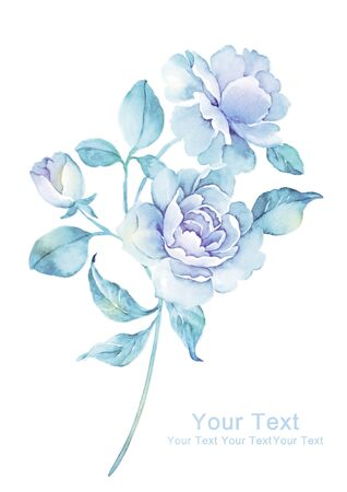 watercolor illustration flowers in simple background Stock fotó