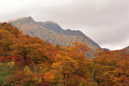 myst: Mountainous Autumn Landscape in Japan Stock Photo