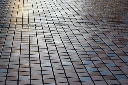 pedestrian walkway: Japan Pedestrian Walkway