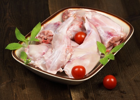 Portions of raw rabbit on the plate  photo