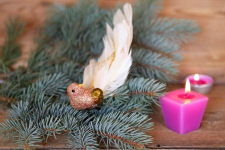 Christmas glass bird on the pine branch photo