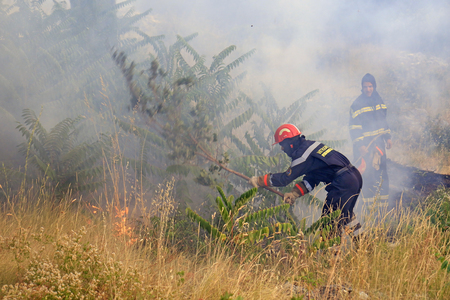 Zrnovnica, Split, Croatia - July 17, 2017: Firefighters gasing the fire with the branches when they run out of water during the massive wildfire burning down the forest and villages around city Split