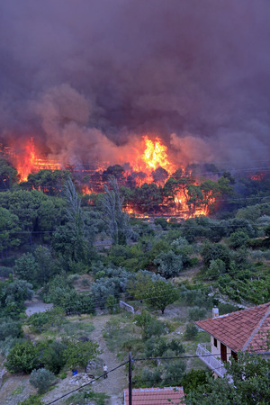 Zrnovnica, Split, Croatia - July 17, 2017: Massive wildfire burning down the forest and villages around city Split