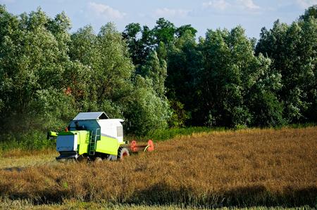 back of combine-harvester