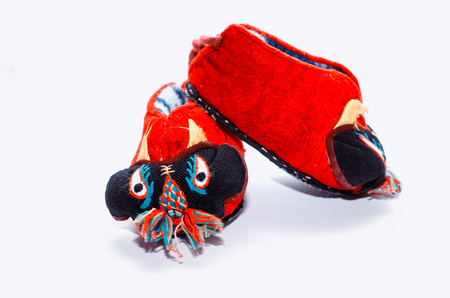 Chinese Tiger Shoes