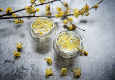 Chimonanthus praecox tea 版權商用圖片