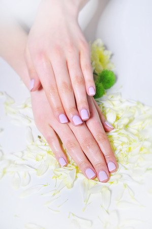 Manicure and hand spa. Beautiful female hands hands up close
